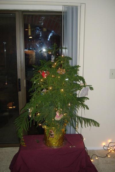 2006_1216christmastime0021_1
