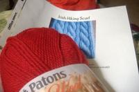 Redscarf2b_1